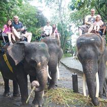 Découvrez Bali en famille